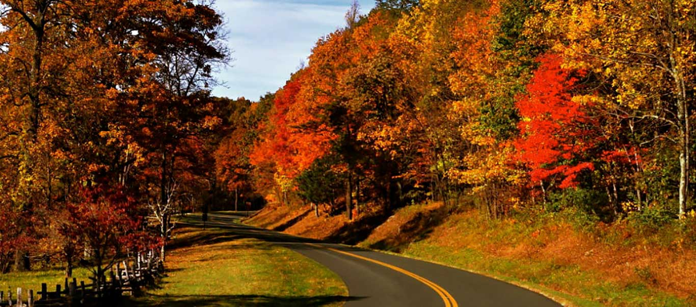 Scenic Drives and Fall Foliage