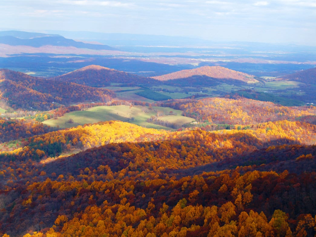 Food, Brews, and the Outdoors: An Inside Look at Shenandoah Valley's Self-Guided Cultural Excursions