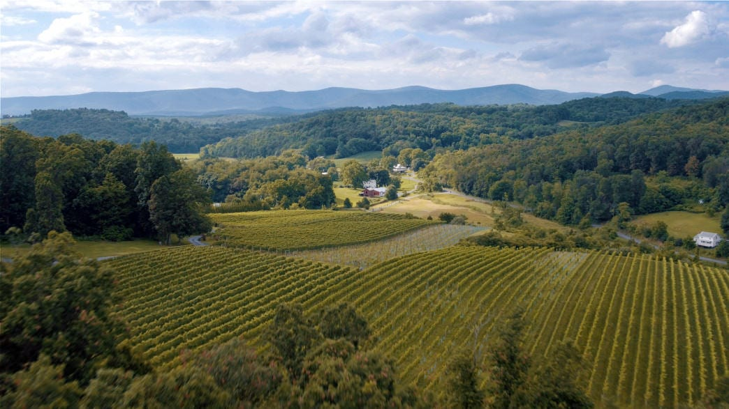 Exploring the Shenandoah Valley Wine Trail