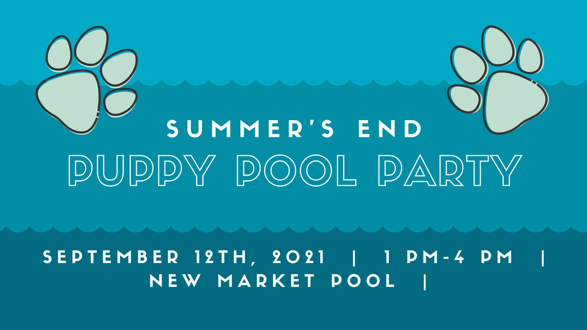 Summer's End Puppy Pool Party